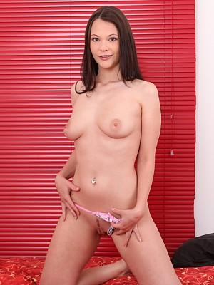 Sandy Ambrosia